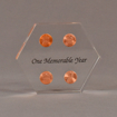 """Front view of 4"""" x 5"""" hexagon acrylic embedment award with four pennies cast in clear acrylic and black text."""