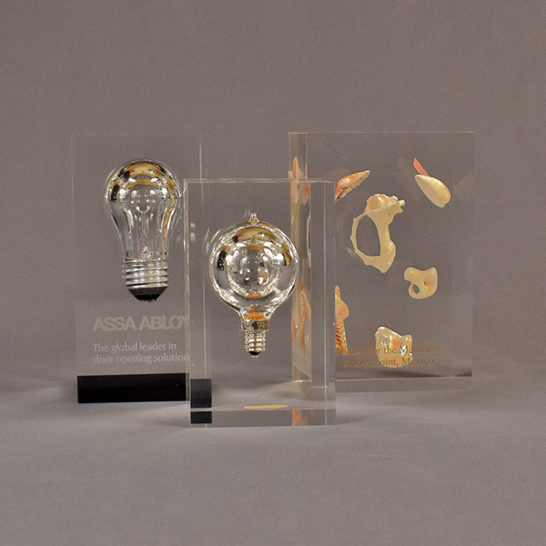 Three rectangle block acrylic embedment awards two with light bulbs the other with sea shells cast into clear acrylic.