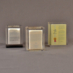 Three prospectus book acrylic embedment awards with legal documents cast in crystal clear acrylic.
