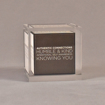 "Front view of 3 1/2"" cube acrylic embedment award with creative printed cube cast into clear acrylic."