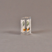 """Side view of 3"""" square acrylic embedment award with Eco Power logo and vial of oil cast in acrylic."""