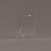"""Front view of 4"""" x 5"""" rectangle acrylic embedment award with brass arrows cast into crystal clear acrylic resin."""
