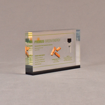 """Angle view of 4"""" x 6"""" rectangle acrylic embedment award with wood pellets and oil vial cast into clear acrylic."""