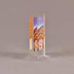 "Side view of 4 1/2"" x 5"" rectangle acrylic embedment award with Venice Pacesetters logo and photo cast into acrylic."