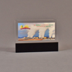"Front view of 4 1/2"" x 6"" rectangle acrylic embedment award with Palo Verde promotional photo cast in acrylic."
