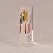 "Side view of 6"" x 7"" rectangle acrylic embedment award with three Future City coins cast into crystal clear acrylic."