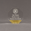 """Front view of ColorCast™ 5"""" Octagon Acrylic Award with gold glitter color highlight showing trophy laser engraving."""
