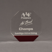 """Front view of ColorCast™ 6"""" Octagon Acrylic Award with transparent burgundy color highlight showing trophy laser engraving."""