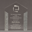 """Front view of ColorCast™ 8"""" Pillars Acrylic Award with silver glitter color highlight showing trophy laser engraving."""