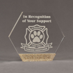 "Front view of Composites™ 7"" Hexagon Acrylic Award with Aspen Brown Staron® accent showing trophy laser engraving."