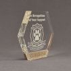 "Side view of Composites™ 7"" Hexagon Acrylic Award with Aspen Brown Staron® accent showing trophy laser engraving."