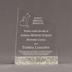 """Front view of Composites™ 8"""" Meridian Acrylic Award with Platinum Grey Staron® accent showing trophy laser engraving."""