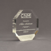 """Angle view of Composites™ 6"""" Octagon Acrylic Award with Sanded White Pepper Staron® accent showing trophy laser engraving."""