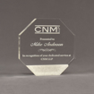 """Front view of Composites™ 6"""" Octagon Acrylic Award with Sanded White Pepper Staron® accent showing trophy laser engraving."""