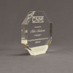 """Side view of Composites™ 6"""" Octagon Acrylic Award with Sanded White Pepper Staron® accent showing trophy laser engraving."""