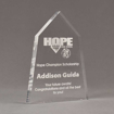 """Angle view of Aspect™ 8"""" Obelisk™ Acrylic Award featuring laser engraved HOPE High School logo and champion scholarship text."""