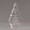 """Side view of Aspect™ 8"""" Peak™ Acrylic Award featuring laser engraved science logo and Noes Middle School honoree text."""