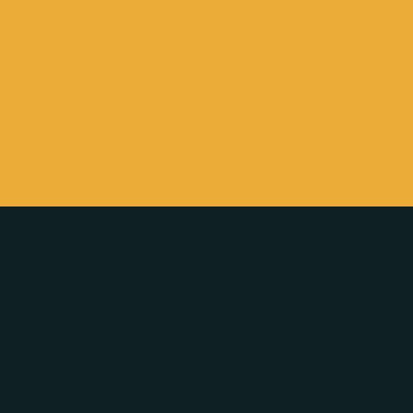 Black | Gold