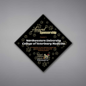 """Adamas Acrylic Plaque shown 12"""" tall with black background and full color imprint of Northwestern University logo."""