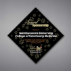 """Adamas Acrylic Plaque shown 14"""" tall with black background and full color imprint of Northwestern University logo."""