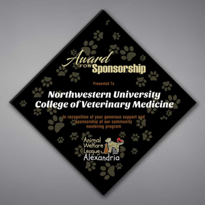 """Adamas Acrylic Plaque shown 16"""" tall with black background and full color imprint of Northwestern University logo."""