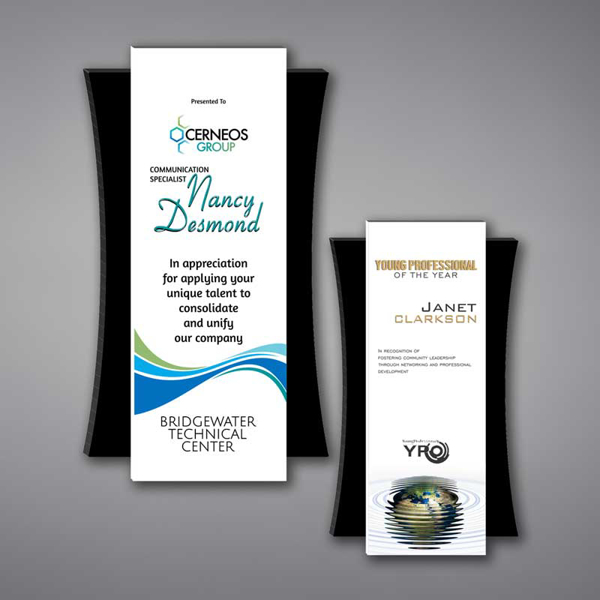 Two Plank Acrylic Plaques featuring a unique floating design and full color imprint of Young Professional of the Year Awards